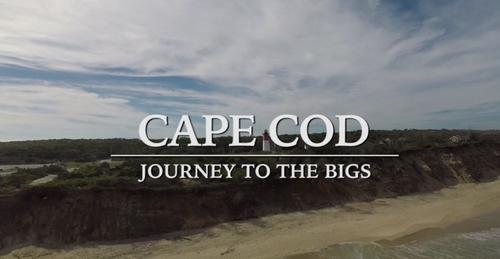 Cape Cod Baseball League: News