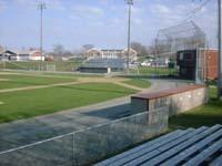 falmouth_field.jpg